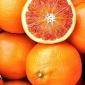 """Rinviata a sabato 4 Marzo la distribuzione delle arance ordinate al Consorzio Siciliano """"Le Galline felici"""""""