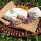 Inizia la distribuzione dei formaggi freschi di capra della Coop. Solidarietà 90